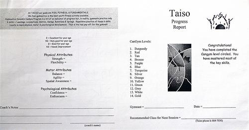 Read book report card ncca PDF - Read Book Online